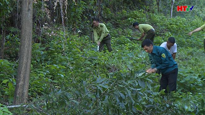 Anh Phạm Văn Hải (áo xanh dương) ở phường Trung Lương, thị xã Hồng Lĩnh phối hợp với kiểm lâm làm đường băng, ngăn cách giữa nhà với rừng