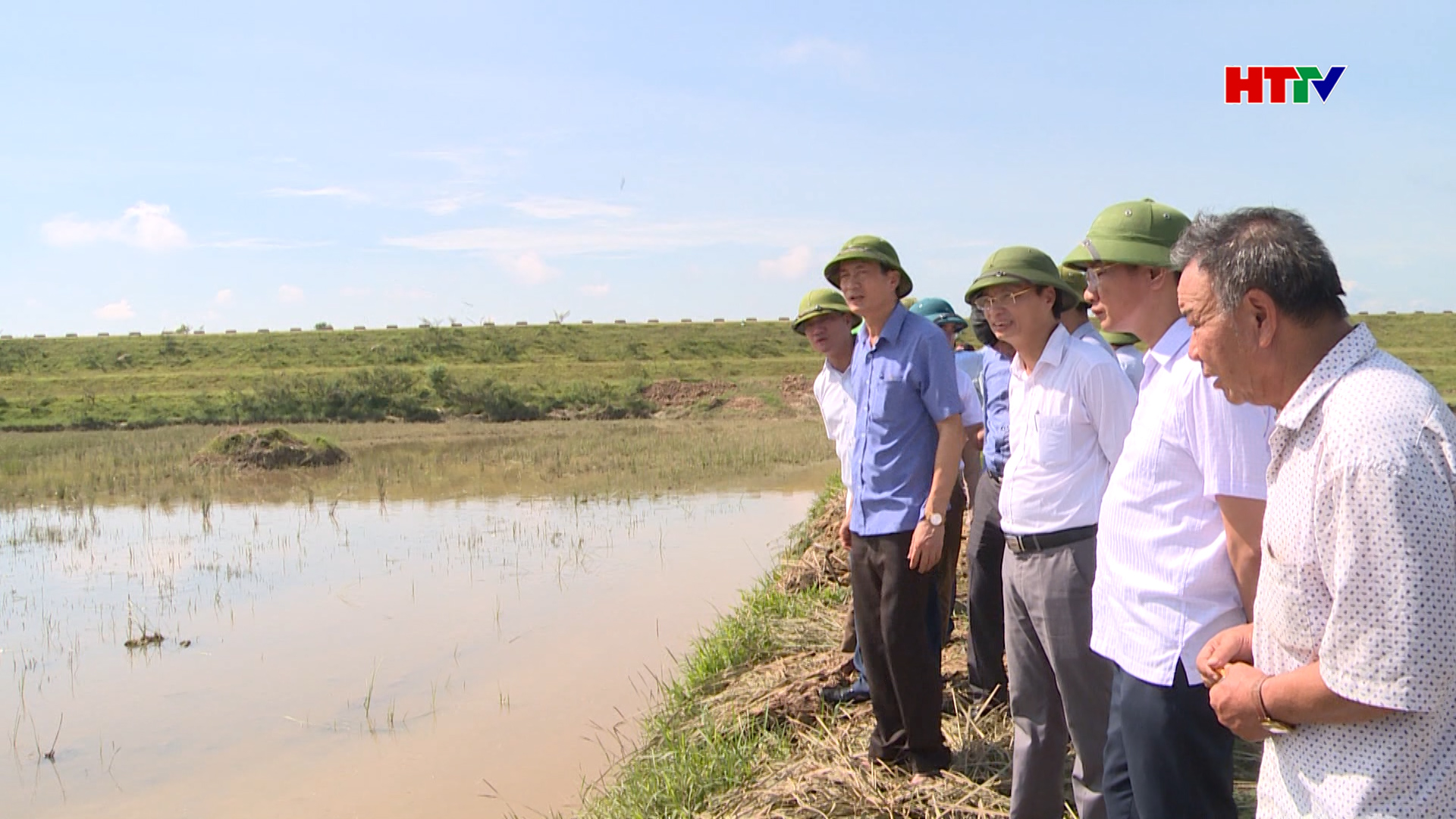 Đức Thọ hướng tới xây dựng thương hiệu gạo hữu cơ đặc sản trên ruộng rươi, cáy